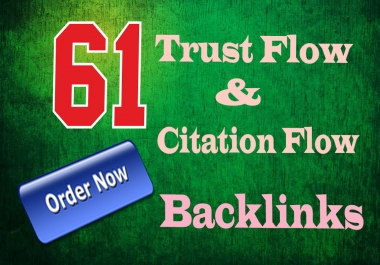 I will do 61 High Trust flow and Citation flow seo backlinks on Authority Sites