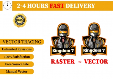 I will do vector tracing, redraw or convert to vector manually