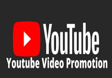 YouTube Video Promotion Social Media Marketing High Ranking