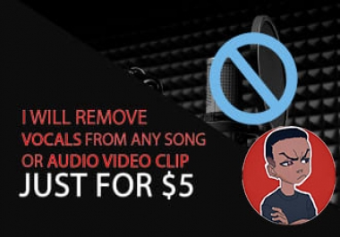 I will remove vocal , voice from your audio file or music