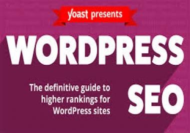 I will do SEO on wordpress website optimization for your website ranking