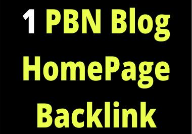 1 PBN Blog Homepage SEO Backlink Limited Time Offer Cheap Backlinks