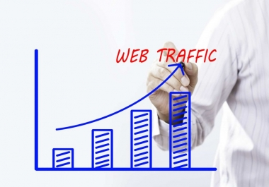 I Will Deliver 10 000 Website Visits to any URL Worldwide