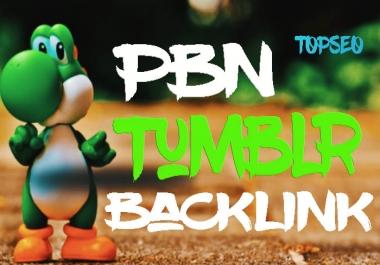 PBN Niche 35 tumblr bookmark backlink from DA30+ site