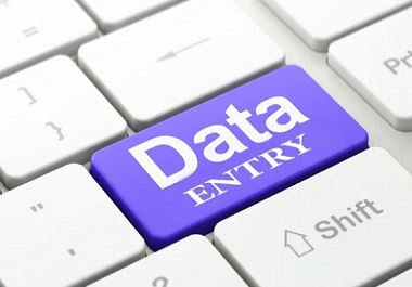 I will do excel work, data entry, copy paste,data typing and graph 1 hour