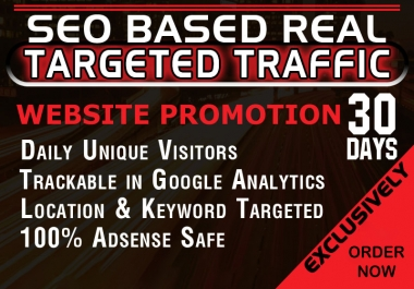 Drive USA targeted web traffic (10K+ High Quality USA Web Traffic with BONUS SEO Back Links)