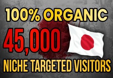 Drive real Japan targeted web traffic (60K visitors)