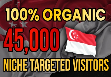 Drive real Singapore targeted web traffic(60K visitors)