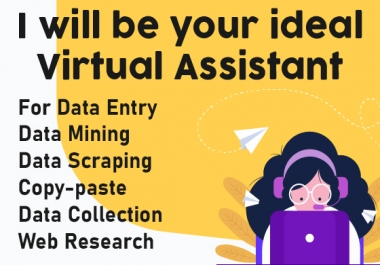 I will be your ideal Virtual Assistant