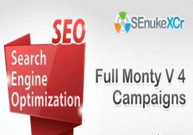SEnuke the full monty v4 campaign