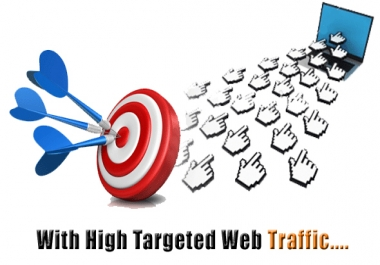 I Will Give You 100000+ USA visitors For your WEB site