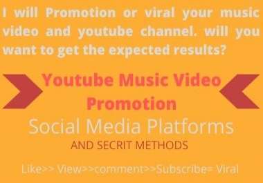 I will Promotion or viral your music video. will you want to get the expected results?