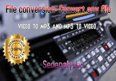 I will convert video to mp3,mp4 or other format you desire