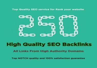 I will do 250 High Quality profile Backlinks manually for Website SEO