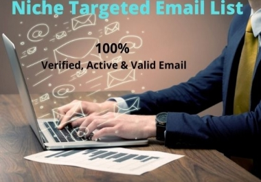 USA niche targeted email list for your business