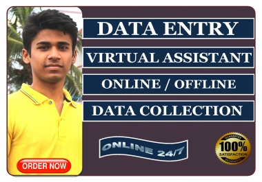 I will be your virtual assistant for online and offline data entry jobs