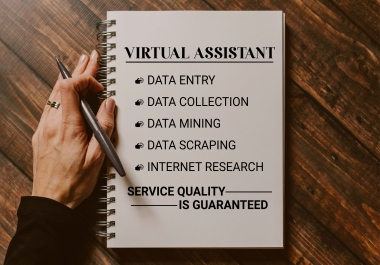 I will be your Virtual Assistant for Data Entry and Web Research.