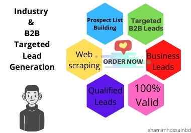 I will do Targeted b2b Leads and valid data from any platform