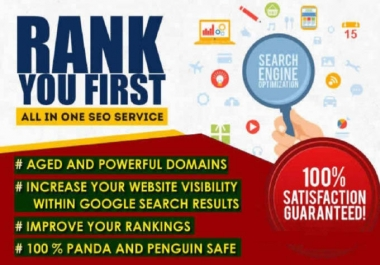All In One SEO Link Building Lite Package