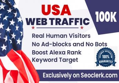 Send USA 100,000 keyword target organic traffic from google