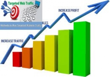 deliver 10000 + USA Real Web Traffic For your WEB site