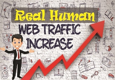 I will drive real human traffic for your website