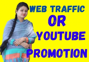 provide organic web traffic or youtube promotion