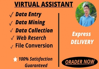 I will do Online or Ofline Data Entry, Web Reserach ,Copy and Paste As A VIRTUAL ASSISTANT