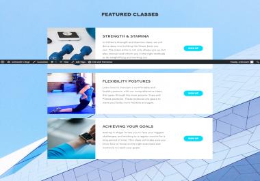 I will create professional business wordpress website or blog design