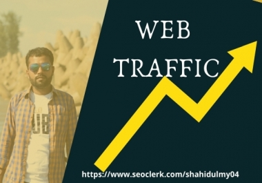 I will bring real visitors, targeted web traffic boost SEO