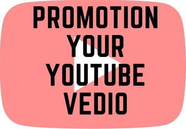 I Will Marketing & Promotion Your Youtube Video
