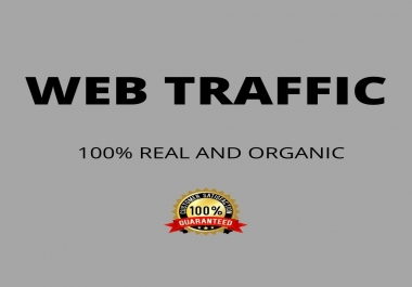 I will bring real organic targeted web traffic