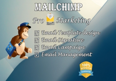 I will create mailchimp template and run campaign