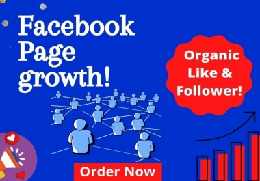 Promote & Advertise your Facebook page organically to large audience