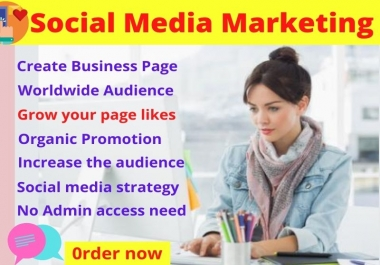 I will manage and promote your Instagram, Facebook page social media to grow your business