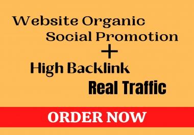 Organic Website Promotion With High Bancklink & Get real Web Traffic