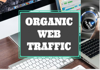 Real organic traffic daily 100+ visitor to your site for 30 days