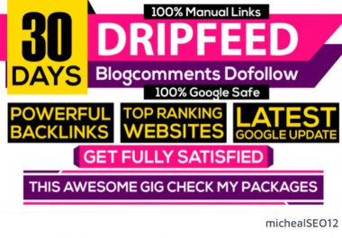 I Will DO 30 Days SEO Backlinks Package High Quality Links 100%