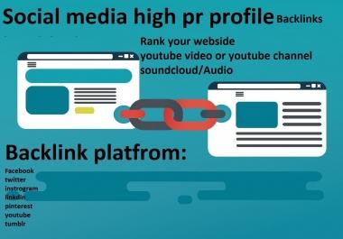 Create manual 300 social media high PR profile backlinks