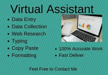 Virtual Assistant Data entry Data Analysis Reports