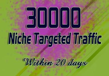 Drive 30000 Real Web Traffic Hits
