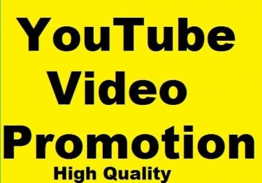Youtube Video promotion and Social Media promotion Marketing