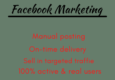 I will do manage Facebook advertising, and FB ads campaign