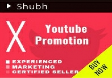 Do Youtube Promotion on Unlimited Videos