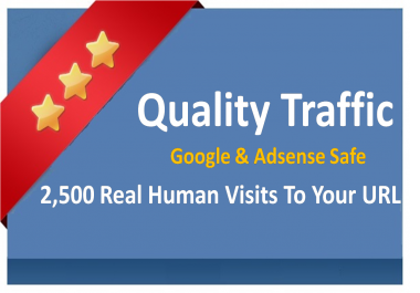 I will send 2500+ Adsense Safe Worldwide website visitors