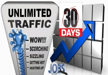 SEO Web Traffic Mix (30 days)