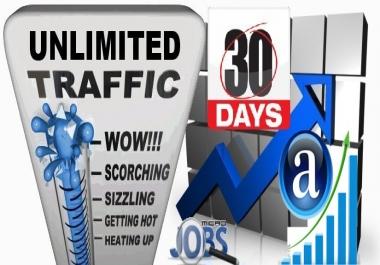 SEO + Alexa Web Traffic Mix (30 days)