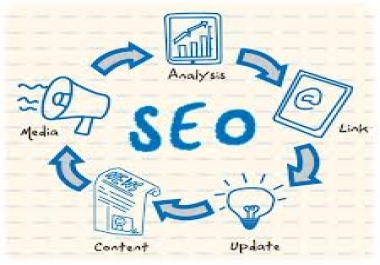 built 120 high PR backlinks from web20 and article directories with 1000 wiki boost for