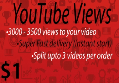 1000 views to your Youtube video [Super Fast delivery]