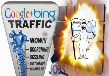 Organic Traffic from Google & Bing (White Hat SEO)